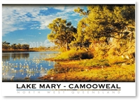Lake Mary - Standard Postcard  CAM-138
