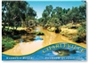 Warrego River - Standard Postcard  CHA-254