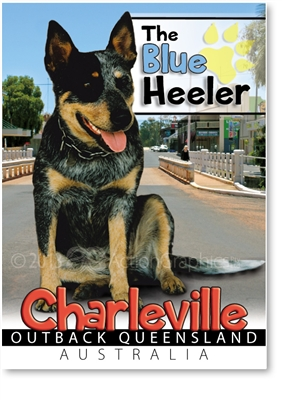 The Blue Heeler - Small Magnets  CHAM-004