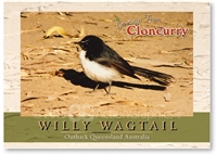 Willy Wagtail - Standard Postcard  CLO-007