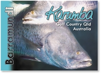 Live Barramundi - Small Magnets  KARM-004