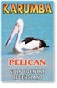 Karumba Pelican - DISCOUNTED Small Magnets  KARM-032