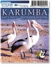 Karumba, Pelicans  - DISCOUNTED Sticker  KARS-025