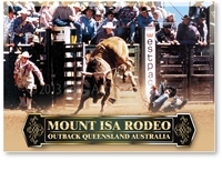 Bull Riding at Mount Isa Rodeo - Standard Postcard  MTI-115