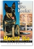The Blue Heeler - Small Magnets  MTIM-002