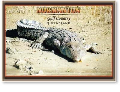 Normanton Big Salty - Standard Postcard  NOR-012