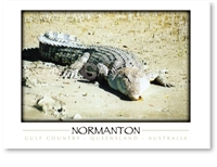 Normanton Gulf Country Queensland - DISCOUNTED Standard Postcard  NOR-401