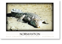 Normanton Crocodile - Small Magnets  NORM-171