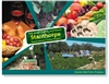 Granite Belt Farm Produce - Standard Postcard  STP-169