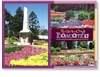 Toowoomba The Garden City - Standard Postcard  TBA-007