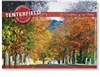Tenterfield Birthplace of out Nation - Standard Postcard  TEN-482