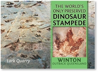 Winton, Dinosaur Stampede - Small Magnets  WINM-072