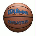 Wilson Evolution Official Size Game Basketball-Royal