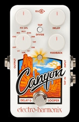 The Guitar Sanctuary | Electro Harmonix | Canyon Delay and Looper Pedal