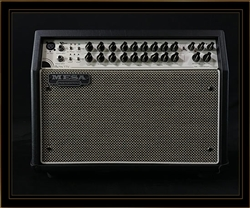 Mesa Boogie Rosette 300 Two:Eight Acoustic Combo in Black with Cream and Black Grille