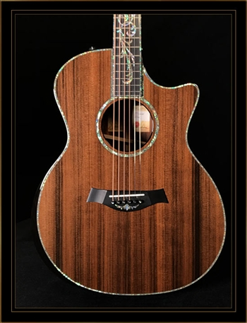 Taylor PS14CE Presentation Series Grand Auditorium with Cocobolo Back and Sides