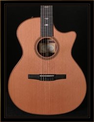 Taylor 714CE-N Rosewood Grand Auditorium Nylon String