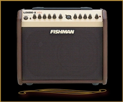 Fishman Loudbox Mini Acoustic Amplifier at The Guitar Sanctuary McKinney Texas