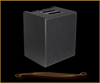 AER MM200 Monte Montgomery Signature Acoustic Amp at The Guitar Sanctuary McKinney Texas