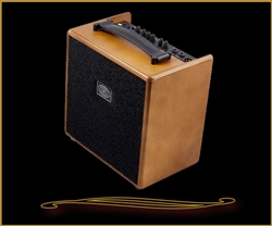 Schertler Giulia Wood 50 Watt Acoustic Amp at The Guitar Sanctuary McKinney Texas