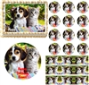 Adorable Kitten and Puppy Edible Cake Topper Image Cupcakes Cookies Puppy Cake
