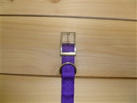 "1"" x 18"" Double Ply Collar w/ Buckle on End"