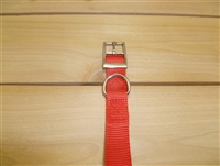 "1"" x 20"" Double Ply Collar w/ Buckle on End"