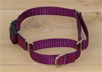 "1/2"" Martingale Collar w/ Release Buckle"