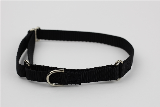 "5/8"" Greyhound Collar"