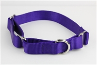 "1"" Greyhound Collar"
