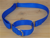 "1"" Extra Large Martingale Collar"