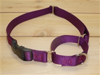 "1"" Martingale Collar with Buckle- XL"