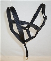 Large Head Halter