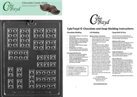 Assorted Building Blocks Chocolate Candy Mold with Exclusive Cybrtrayd Copyrighted Molding Instructions