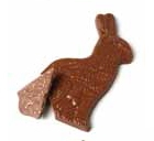Bunny Bark Easter Mold