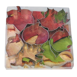 Autumn Leaf Cookie Cutter 7 Piece Set