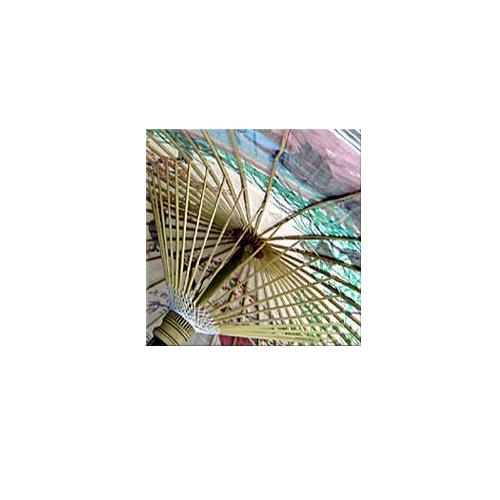 Hand Painted Patio Umbrella Asian Spring Sand