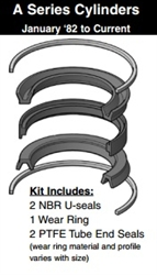 "090-KB001-1000, PISTON SEAL KIT, 10"" BORE, NITRILE / TEFLON (PTFE)"