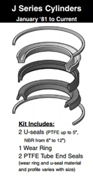 "091-KB001-325, PISTON SEAL KIT, 3-1/4"" BORE, NITRILE / TEFLON (PTFE)"