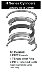 "171-KB001-1000, PISTON SEAL KIT, 10"" BORE, TEFLON (PTFE)"
