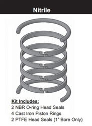 "PR202H0001, PISTON RING KIT, 2"" BORE, NITRILE"