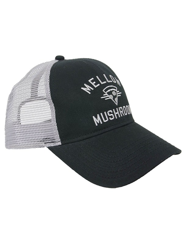 Iconic Mesh Back Cap - Black / Grey