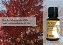 Sacred Frankincense Essential Oil