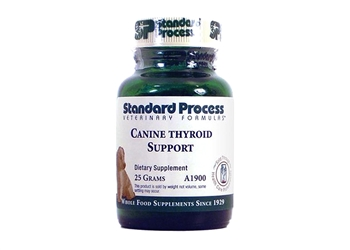 Standard Process Canine Thyroid Support - 25 grams
