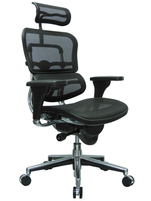 Eurotech ME7ERG Mesh Executive Chair with Headrest