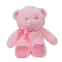 9'' MY FIRST TEDDY (2) <b class='icon-new-product'></b>