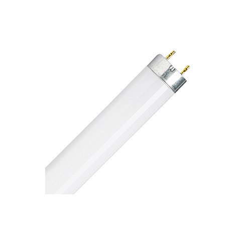 compact lamps fluorescent lamp