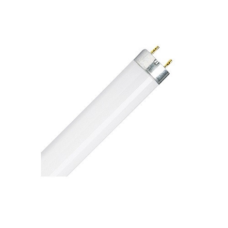 25-Pack of 25W T8 850 Color Temperature Fluorescent Lamps
