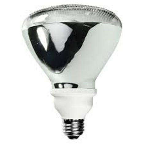 23 Watt Par38 850 Color Temperature CFL Medium Base Lamp