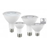 NaturaLED LED9PAR30/80L/FL 9 Watt PAR30 LED Dimmable Lamp